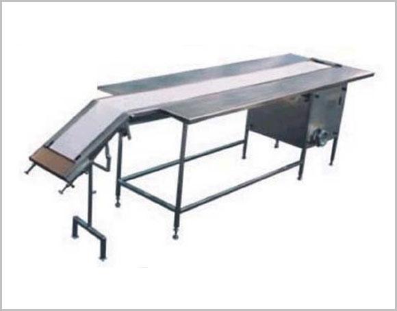 Packing Belt Conveyor Manufacturers India